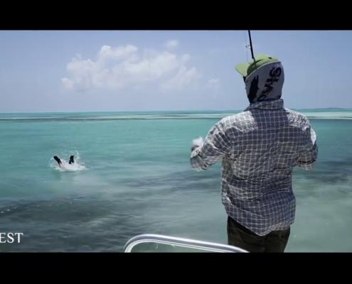 Alphonse-Island-Seychelles-Fly-Fishing
