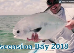 Ascension-Bay-Permit-on-The-Fly