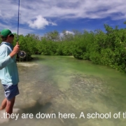 Bow-Arrow-Cast-For-Tarpon