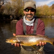Brown-Trout-Cant-Jump