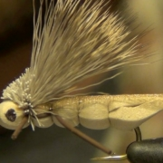 Charlie-Boy-Hopper-Fly-Tying-Instruction-Directions-and-How-To-Tie-Tutorial