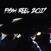 FISH-REEL-2017-Fly-Fishing-Cinema-Reel-Video
