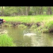 FLOOD-WATER-Streamer-fishing-Montana