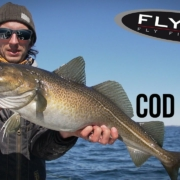 FLY-TV-Cod-on-Fly