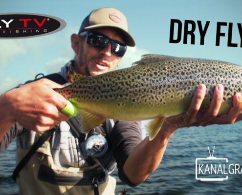 FLY-TV-Dry-Fly-Sea-Trout-Fishing-in-Denmark