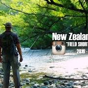 Field-Shorts-New-Zealand-201617-Trip-Field-Instagram-Shorts