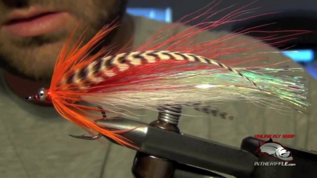 Flashtail-Whistler-Pike-Bass-Fly-Tying-Instructions-Directions-and-How-To-Tie-Tutorial