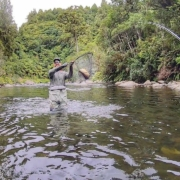 Fly-Fishing-Best-river-in-New-Zealand