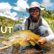 Fly-Fishing-New-Zealand-Backcountry-Dry-Flys