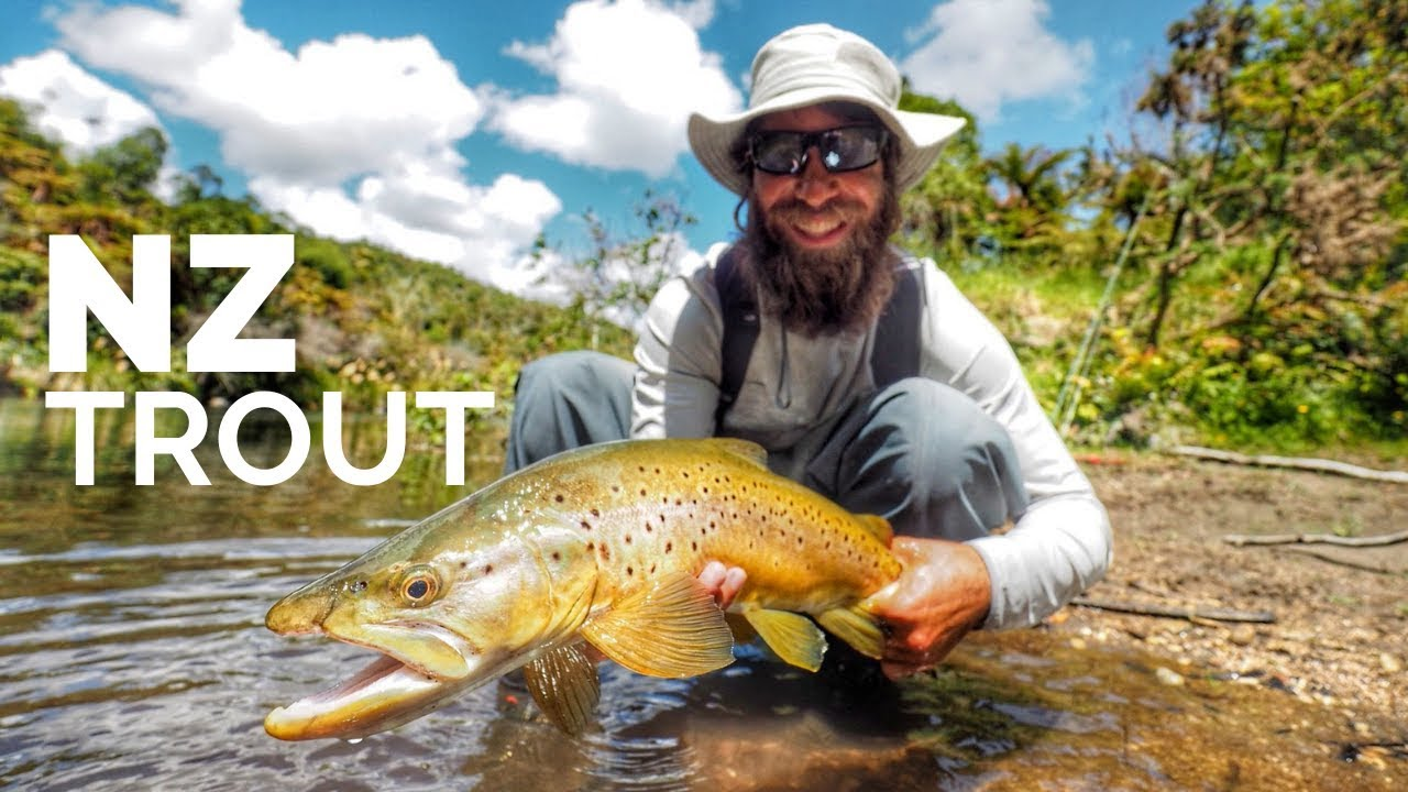 Fly-Fishing-New-Zealand-Backcountry-Dry-Flys