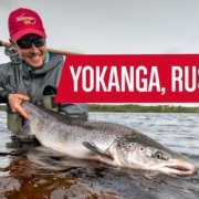 Fly-Fishing-for-Atlantic-Salmon-Yokanga-River-Russia