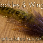 Fly-Tying-Articulated-Sculpin-Hackles-Wings