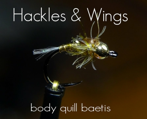 Fly-Tying-Body-Quill-Baetis-Hackles-Wings