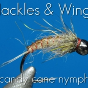 Fly-Tying-Candy-Cane-Nymph-Hackles-Wings