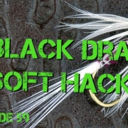 Fly-Tying-Dick-Winters-Black-Drake-Soft-Hackle-Fly-Pattern
