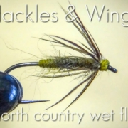 Fly-Tying-North-Country-Wet-Fly-Hackles-Wings