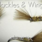 Fly-Tying-Plume-Tip-Hackles-Wings