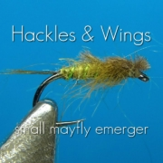 Fly-Tying-Small-Mayfly-Emerger-Hackles-Wings