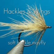 Fly-Tying-Soft-Hackle-Mayfly-Hackles-Wings