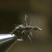 Fly-Tying-a-Black-Fur-Ant-Dry-Fly