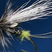 Fly-Tying-a-Black-Rat-with-Jim-Misiura