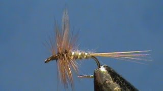 Fly-Tying-a-Blue-Fox-with-Jim-Misiura