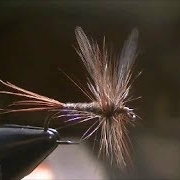 Fly-Tying-a-Borchers-Special-Dry-Fly
