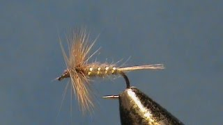 Fly-Tying-a-Classic-the-Blue-Fox-Variant-with-Jim-Misiura