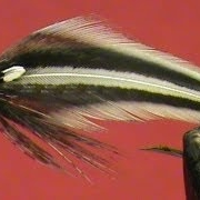Fly-Tying-a-Jungle-Cock-Streamer-with-Jim-Misiura