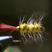 Fly-Tying-a-Wooly-Worm-Wet-Fly