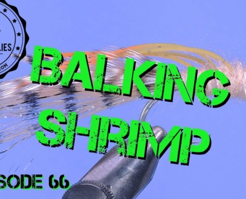 Fly-Tying-the-Balking-Shrimp-Saltwater-Bonefish-and-Permit-Fly-Pattern