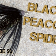 Fly-Tying-the-Black-and-Peacock-Spider-Soft-Hackle-Fly-Pattern