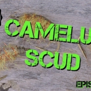 Fly-Tying-the-Camelus-Scud-Trout-Fly-Pattern-Piscator-Flies-Episode-73