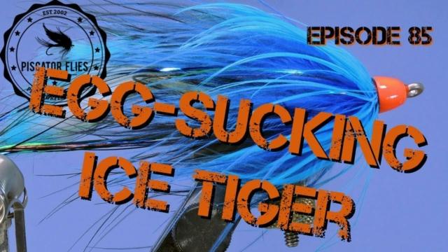 Fly-Tying-the-Egg-Sucking-Ice-Tiger-Steelhead-Salmon-Fly-Pattern-EP-85-PF