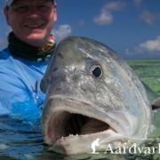 Fly-fishing-Providence-Atoll-Seychelles