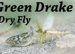 Green-Drake-Mayfly-Dry-Fly-Fly-tying-for-trout