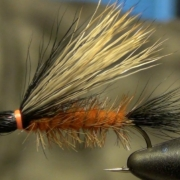 Henrys-Fork-Salmon-Fly-Tying-Directions