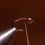 How-to-Rib-a-Fly-and-Why