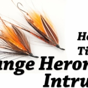 How-to-Tie-an-Orange-Heron-Intruder-Steelhead-Fly-Tying