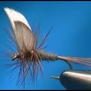 How-to-tie-a-Little-Marryat-Dry-Fly