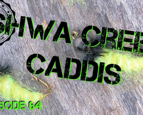 How-to-tie-a-Shwa-Creek-Caddis-Fly-Pattern-Beginner-Fly-Tying