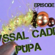 How-to-tie-the-Abyssal-Caddis-Pupa-Fly-Pattern-Episode-14-Piscator-Flies