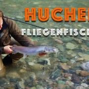 Huchen-Fliegenfischen-in-Bayern