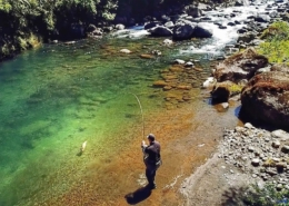Huge-Backcountry-PB-Trout-New-Zealand