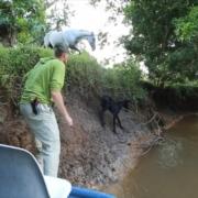 Jungle-Rescue-Mission