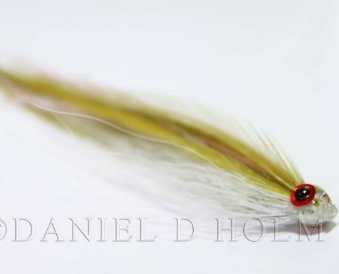 Kystflue-Tobis-Flatwing