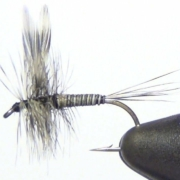 Mosquito-Dry-Fly-Tying-Instructions-and-How-To-Tie-Tutorial