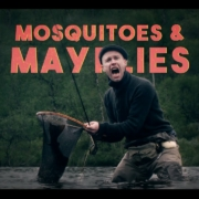 Mosquitoes-Mayflies-EP1-Somewhere-Else