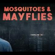 Mosquitoes-Mayflies-EP5-Dry-Fly-Delirium