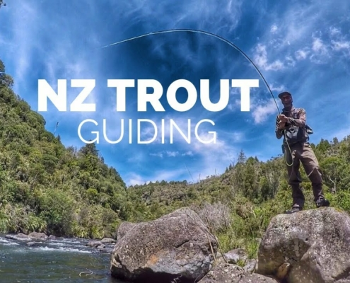 NZ-Trout-Guiding-Amazing-water-with-so-many-Fish